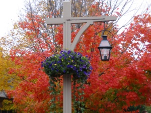 Autumn in Bar Harbor, Maine
