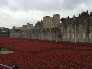 In October of this year the Tower lf London was home to a magnificent display of ceramic poppies to honor the WW I veterans.  A stroll around it was the only way to appreciate it.